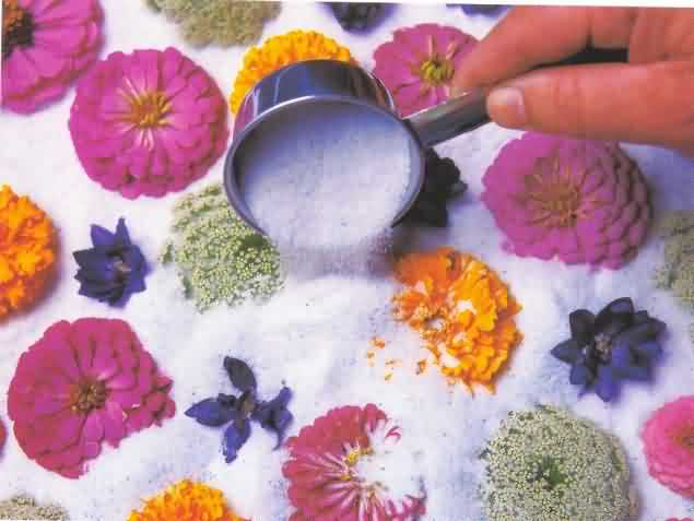 Embeding of flowers in silica gel