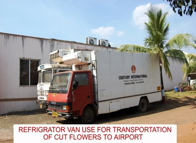 Reefer Van fortransport of cut flowers