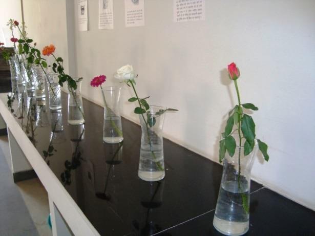 Post Harvest Management Of Cut Flowers Krishisewa