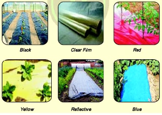 Different type of plastic mulch