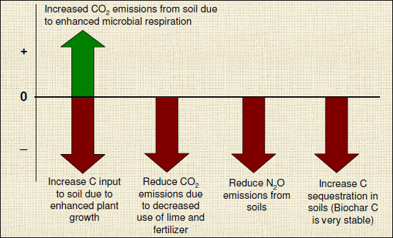Net impact of biochar applications in soil