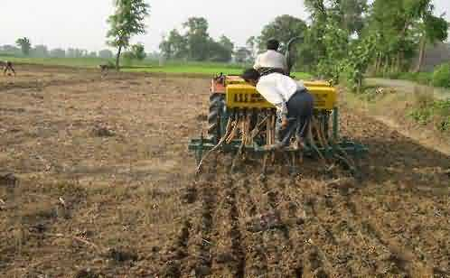 Paddy cultivation in low cost by zero tillage (Direct sowing) technique
