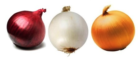 Varieties of Red, white and yellow Onion