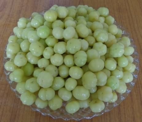 Blanched fruits of star gooseberry